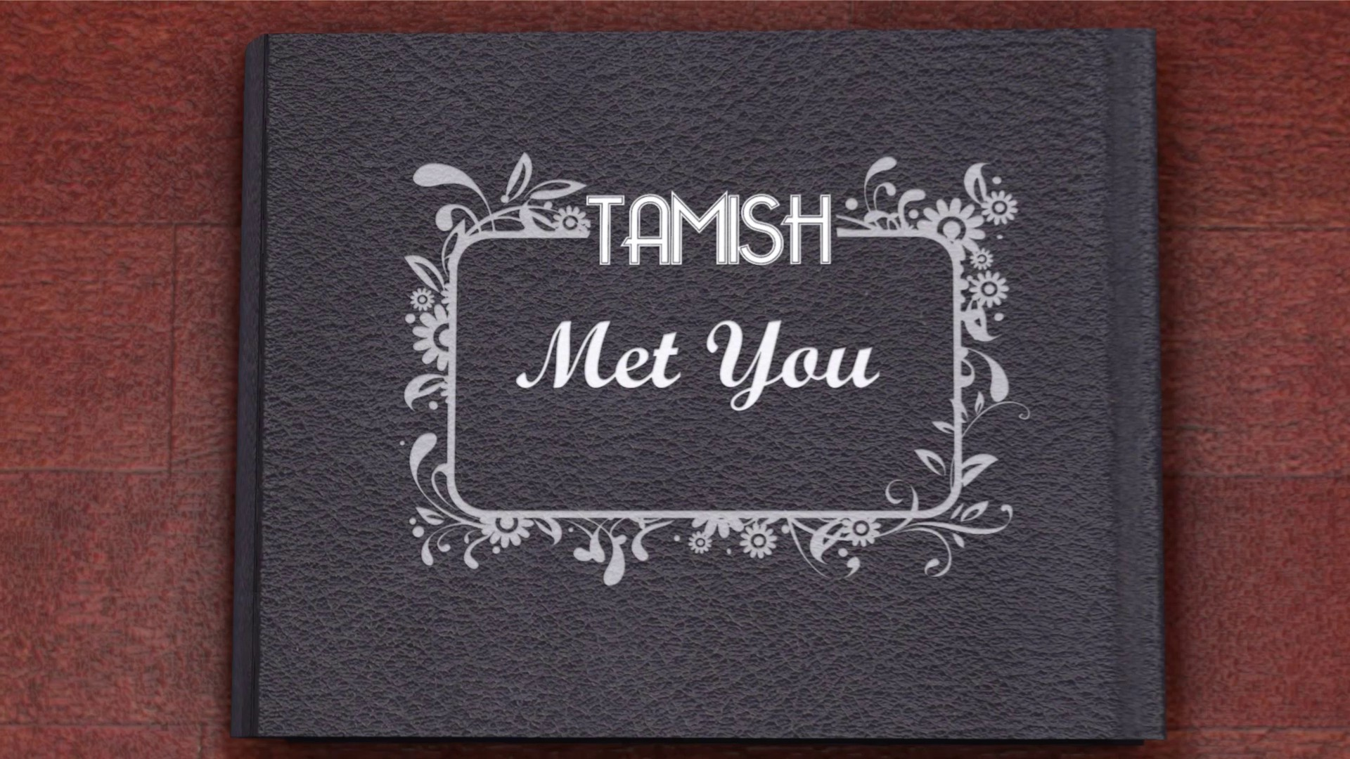 "Still Frame of the music video by Tamish- ""Met You"""