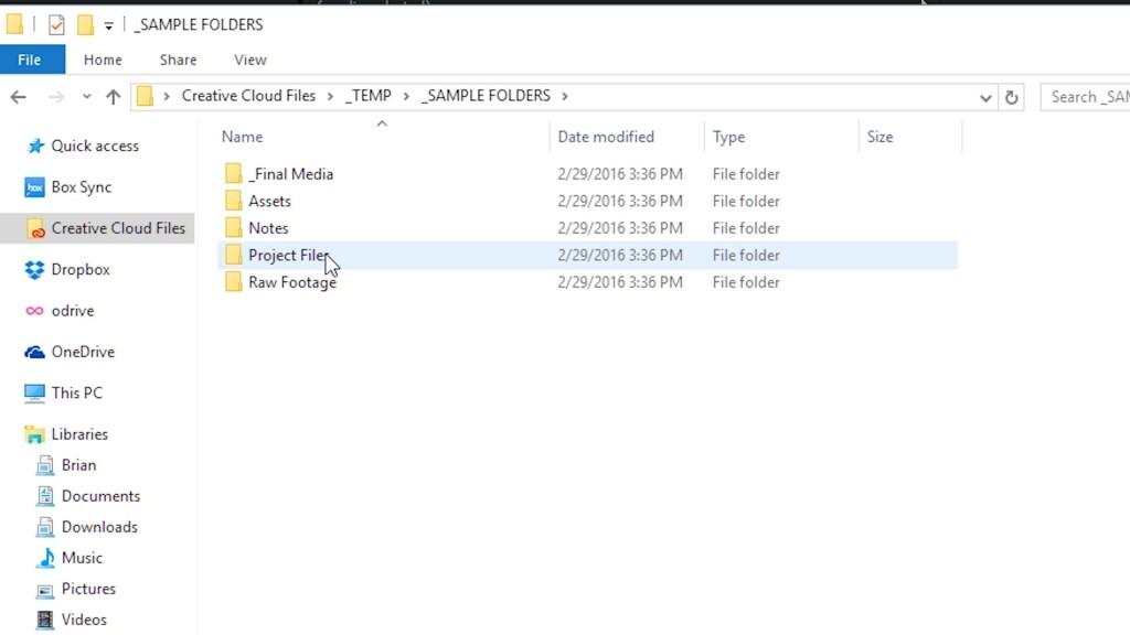 A screenshot of folders on a computer